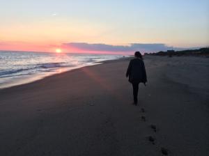 sarah beach